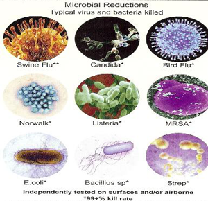 microbial growth and viruses