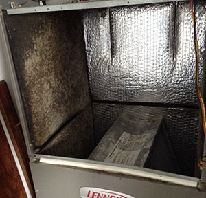 dirty air handler liner