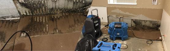 floor-dry